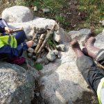 Lapset istuvat kalliolla kivistä ja kepeistä tehdyn leikkinuotion äärellä.