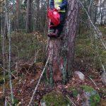 Lapsi puussa repun kanssa.