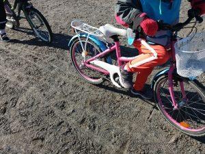 vaaleanpunainenpyörä.
