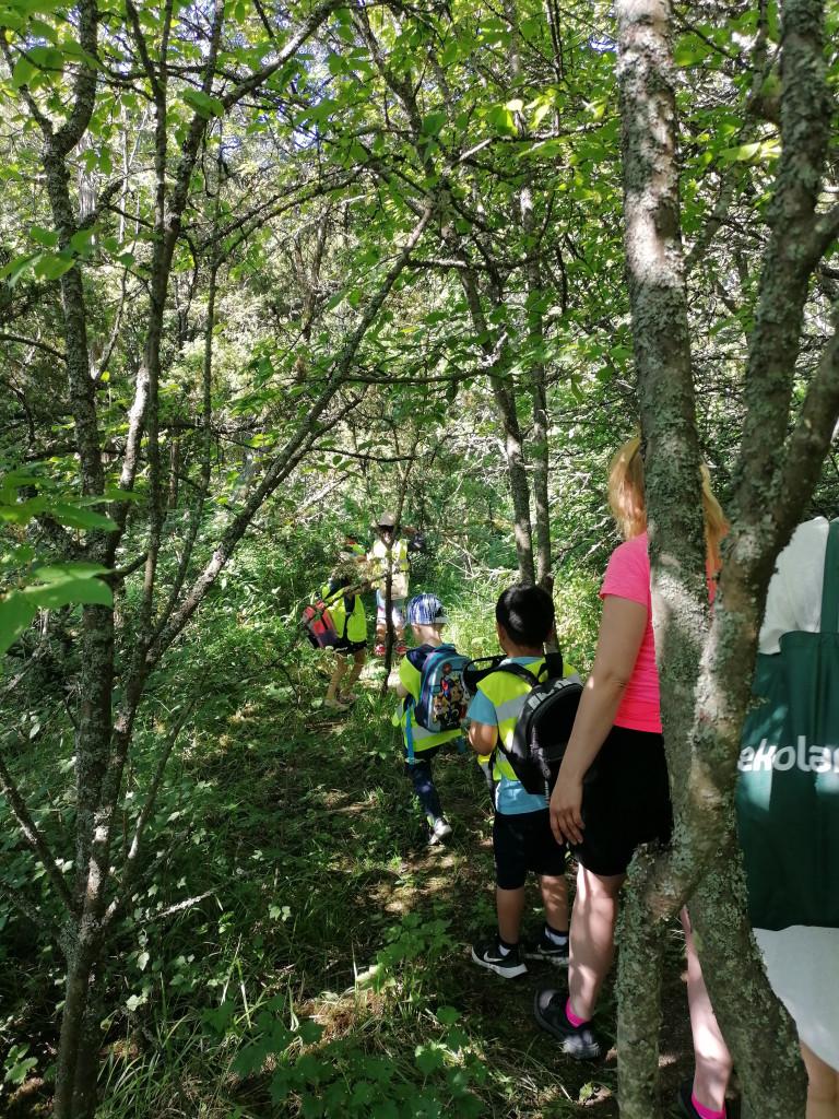 Lapset kävelevät metsässä jonossa.