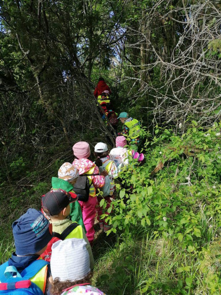 Kuvassa lapset kulkevat jonossa aikuisen perässä retkellä.