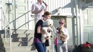 Koirien muotinäytöksen onnelliset voittajat vuodelta 2013