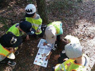 6 lasta tutkimassa värisuunnistus kartta