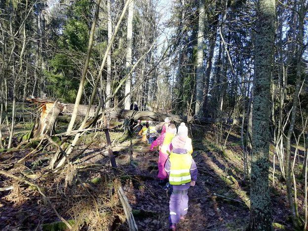 Lapset menevät kyykyssä puunrungon alta joka on kaatunut polun yli.