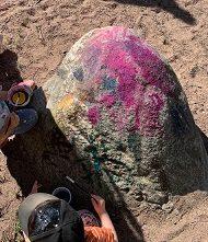 Lapset maalaavat vesiväreillä isoa kiveä.