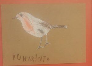 varis, sinitiainen, kirjosieppo ja punarinta väritettynä.