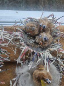 Kuoriutuvat linnunpoikaset, kävystä ja langasta.