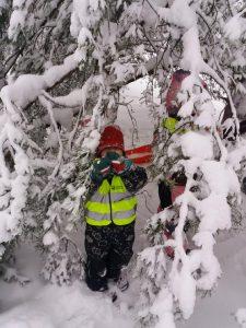 kaksi lasta lumisen puun oksien alla leikkimässä
