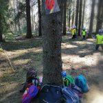 lasten eväsretkireppuja puun juurella