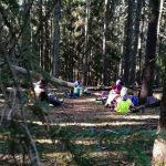 lapsia eväsretkellä metsässä