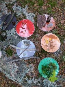 metsässä värien etsintä