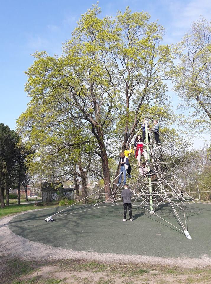 Taustalla iso puu. Edustalla pyramidimainen köysikiipeilyteline, jossa neljä nuorta kiipeilemässä.
