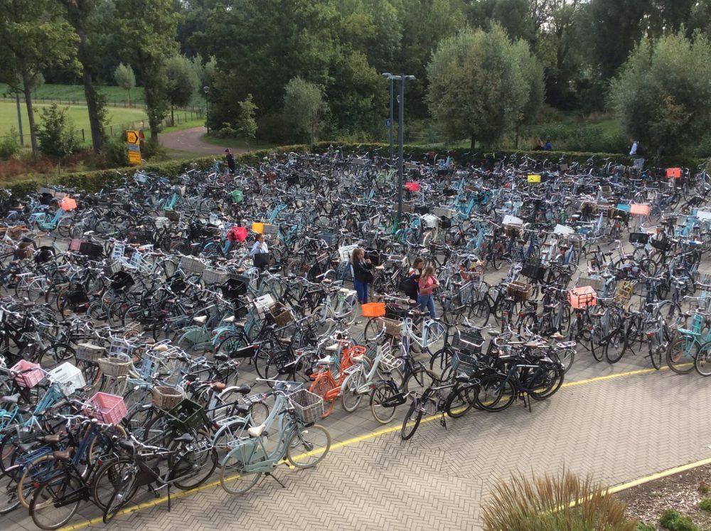 Kuvassa satoja polkupyöriä.