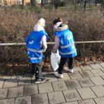 Kaksi oppilasta kerää roskia pensaiden alta jalkakäytävän reunalla