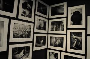 valokuvanäyttely