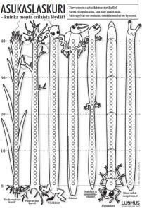 Piirrettyjä ötököitä pituussuunnassa.
