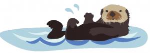 saukko kelluu vedessä vatsa pystyssä.